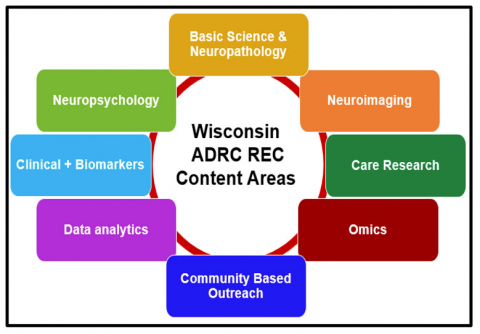 Graphic showing content areas for the Wisconsin ADRC REC Scholar Program